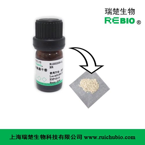 鸡胰腺干粉 鸡胰腺冻干粉 (含γ-谷氨酰基水解酶)
